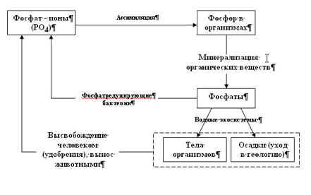 Реферат Тему Аммиак